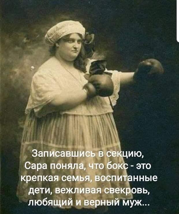 У собак есть хозяин, а у кошек — обслуживающий персонал!