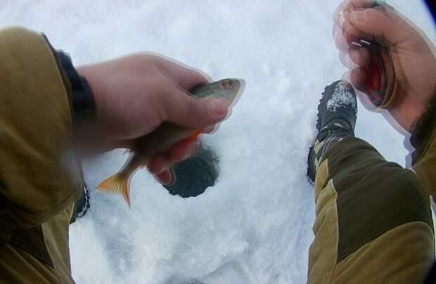 Рыбацкая хитрость. Чтобы очки не запотевали на морозе
