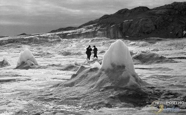 Монстры Антарктиды. Кто сторожит льды Южного полюса