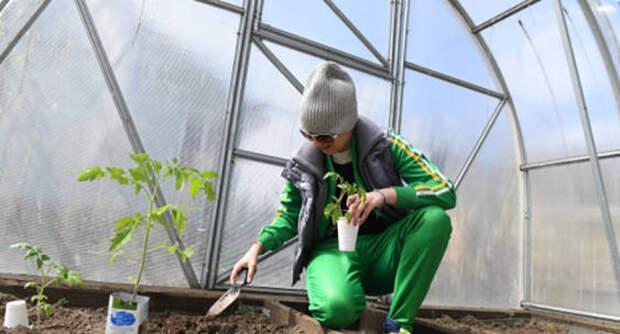 Улыбаемся и пашем: как приумножить дачный урожай