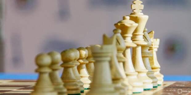 Бесплатные очные занятия открылись в Войковском для пожилых гроссмейстеров