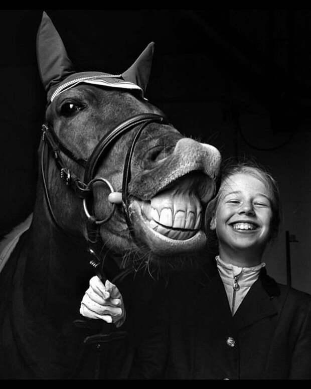 Классные и прикольные фотографии с забавными картинками для улыбки и позитива