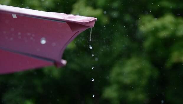 До 16 градусов и небольшой дождь ожидается в Подольске в воскресенье