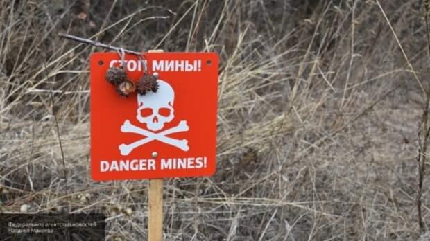 Украинская армия за неделю войны в Донбассе потеряла более 20 солдат ВСУ