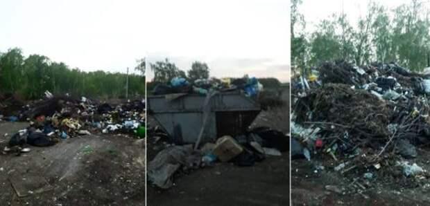Леонид Полежаев пожаловался на свалку рядом с посёлком