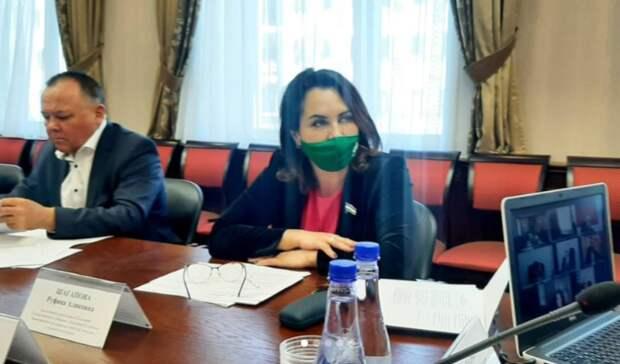 Депутат Курултая высказалась о случае нападения собак на ребёнка в Башкирии