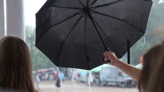 Жителей европейской части России ожидают дожди и грозы с середины недели
