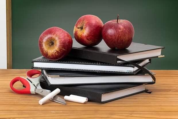 Школа/ Фото pxhere.com