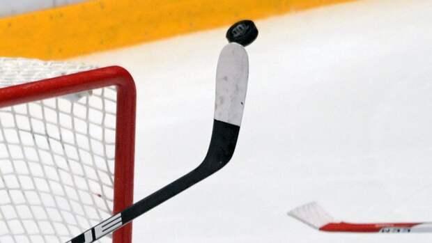 На матче детских команд хоккеисты устроили массовую драку