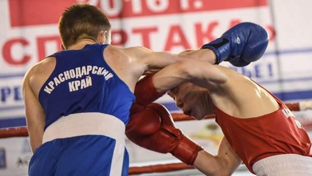 Джеб и апперкот: как развивался бокс на Кубани