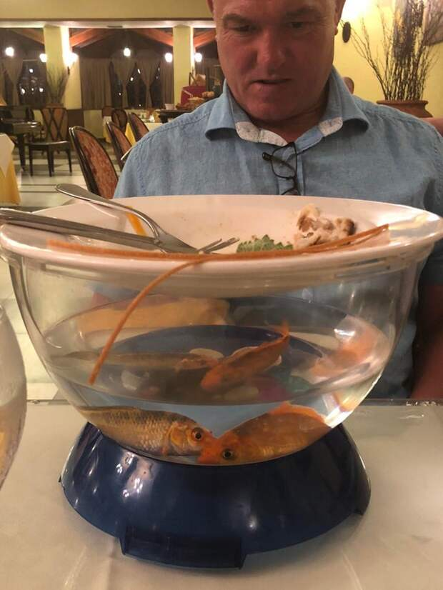12 раз, когда подача блюд в ресторане заставила посетителей содрогнуться