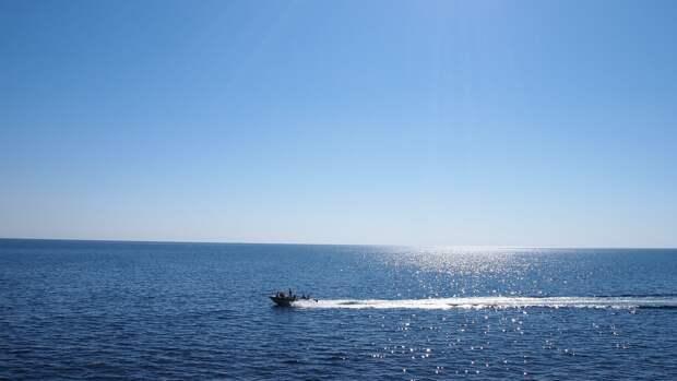 Украинский эксперт призвал США оставить свои военные корабли в Черном море