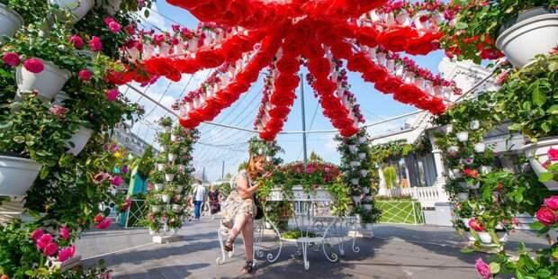Собянин: Фестиваль «Цветочный джем» в Москве начнется 1 сентября