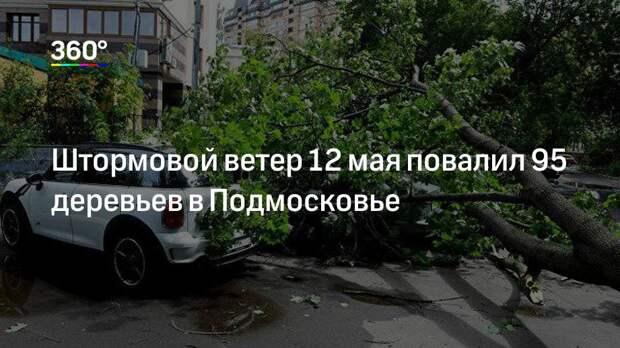 Штормовой ветер 12 мая повалил 95 деревьев в Подмосковье