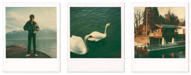 Яркие моменты изжизни Фредди Меркьюри вфотографиях