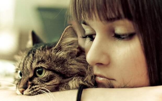 Расстались из-за кошки