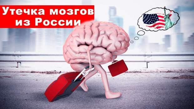 Эксперт развенчал фейк об «утечке мозгов» из России
