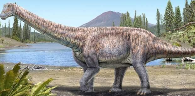 Останки неизвестного вида динозавра нашли в пустыне Чили