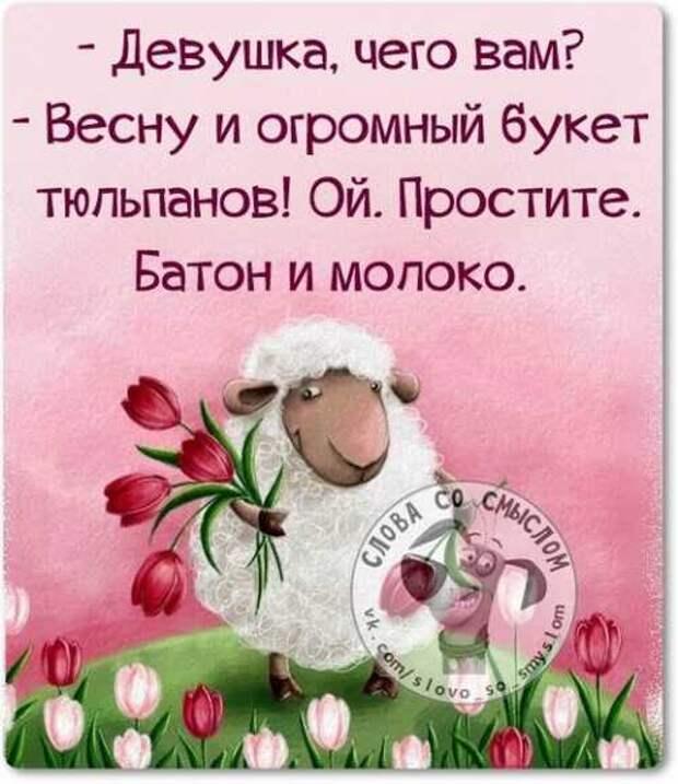 5402287_1425214636_voskresnovesenniefrazyvkartinkah2 (500x579, 35Kb)