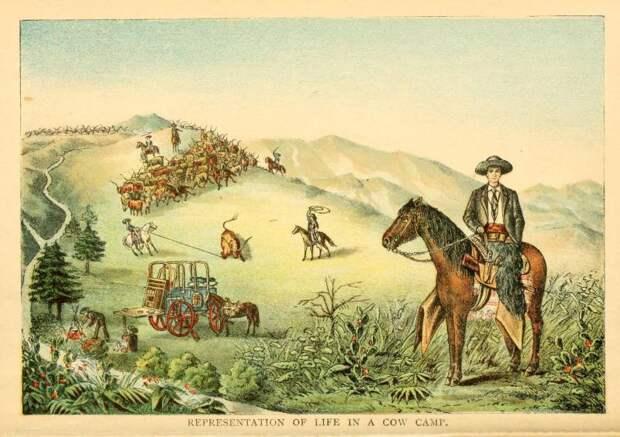 Пастух и культурный феномен. Ковбой Дикого Запада