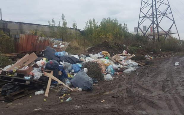 Рязанец рассказал о стихийной свалке возле его дома