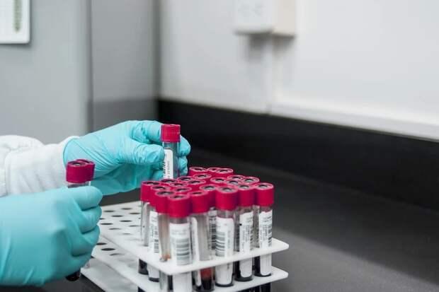 В Минобороны заявили о завершении клинических испытаний вакцины от коронавируса