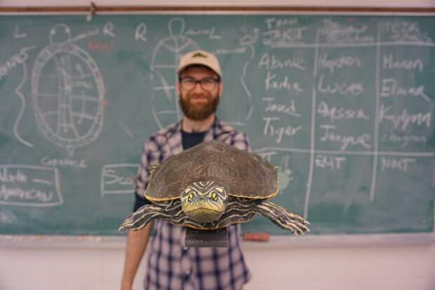 В Канаде создали секс-куклы для черепах