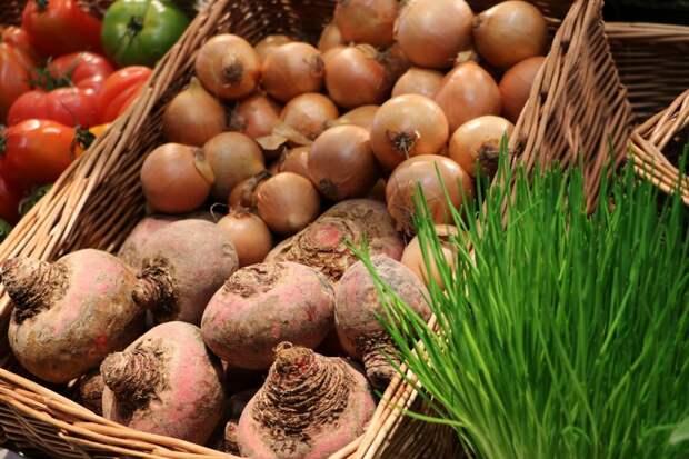 В августе в Удмуртии подешевели овощи