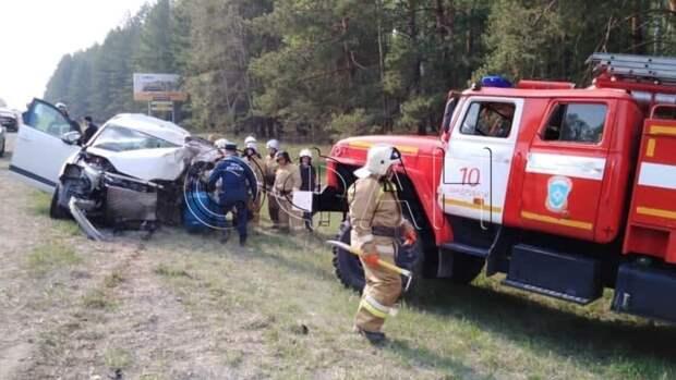 Пять человек погибли в ДТП с микроавтобусом в Курганской области