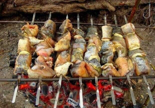 5. Шашлык из судака еда, лук, май, мясо, пикник, рецепт, рыба, шашлык