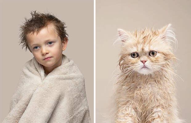 Фото доказательства того, что у кошек есть двойники среди людей, так называемые — доппельгангеры