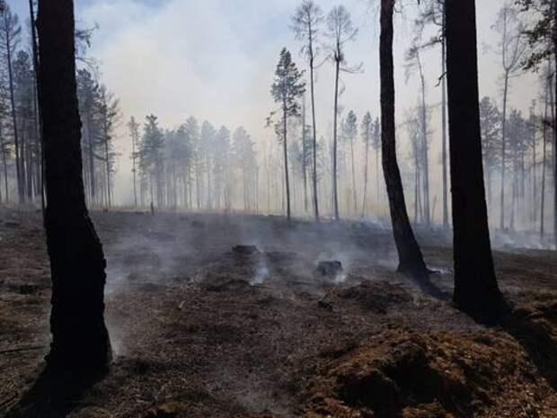 Девять лесных пожаров ликвидировали в Иркутской области за минувшие сутки