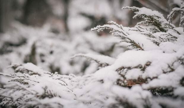 ВНижнем Тагиле в выходные синоптики прогнозируют похолодание до-23 градусов