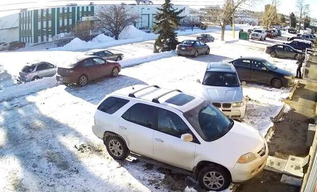 Как паркуются новички (видео)