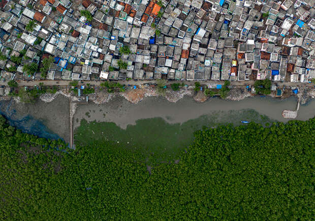 Уход за водно-болотными угодьями. / Фото: Ракеш Пулапа (Индия)