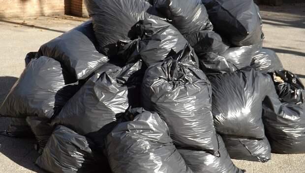 Более 15 кубометров мусора ликвидировали вдоль дороги Дубровицы— Луковня