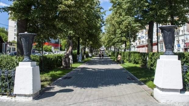 Вырубка Перми: ФАН разбирался, как должны озеленить столицу Прикамья к юбилею