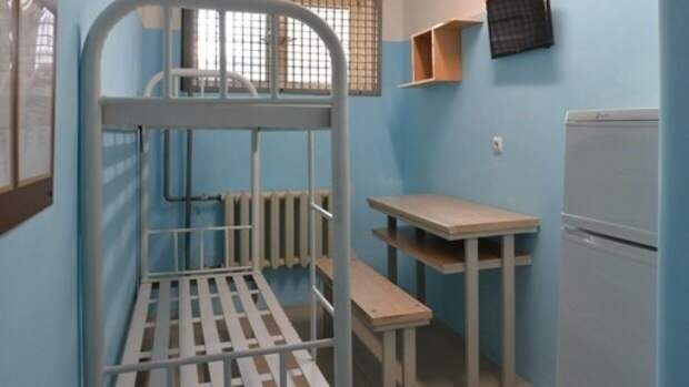 Член ОНК Дегтярев оценил идею о принудительном труде для заключенных