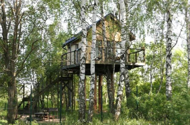 Гостевой дом на дереве. Успешный бизнес российской семьи