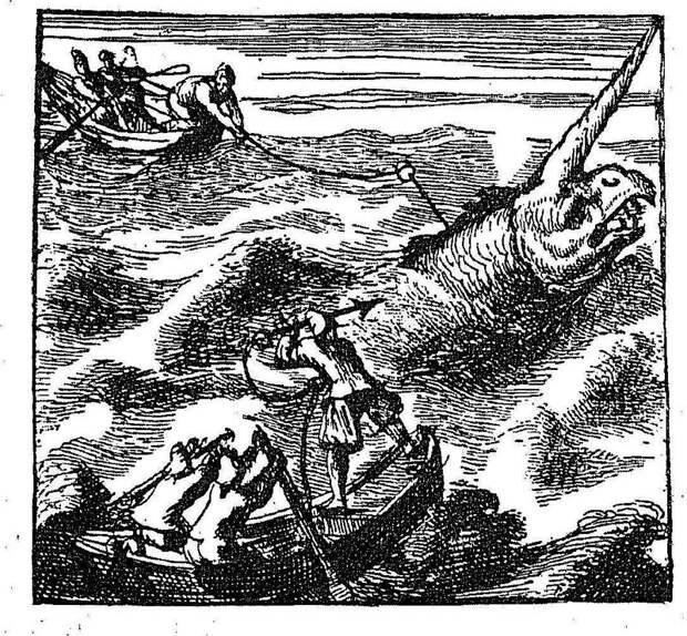 Охота на морскую лошадь, рис. Ламартиньера