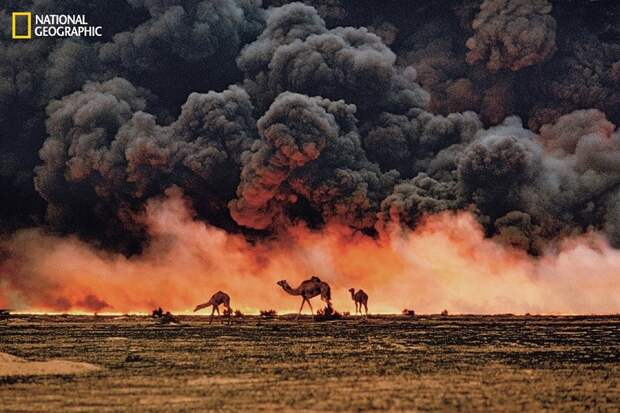 Самые знаменитые фотографии за всю историю National Geographic