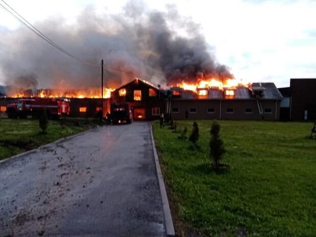 Конюшня загорелась в Дальнеконстантиновском районе