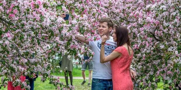 Ландшафтный парк «Митино» приглашает на весеннюю фотосессию