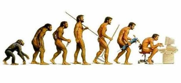 funny-evolution