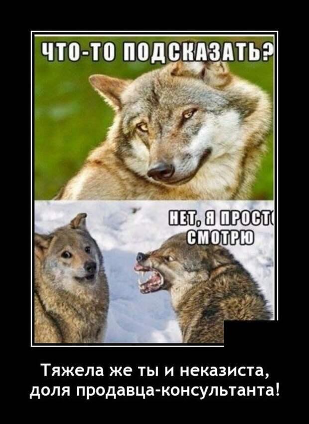 Демотиватор про консультантов