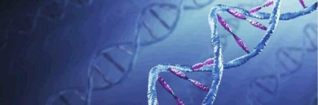 Женщины против ДНК-экспертизы