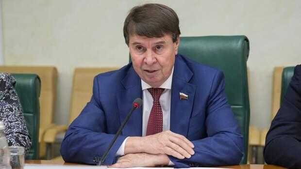 Сенатор Цеков призвал дать отпор Чехии со стороны  в виде экономических санкций