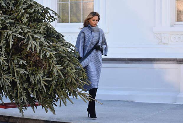 Напоследок: Мелания Трамп на церемонии установки рождественской ели в Белом доме