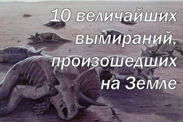 10 величайших вымираний, произошедших на Земле