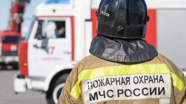 Крупный лесной пожар площадью более 100 гектаров вспыхнул в Тюменской области